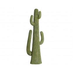 Cactus resina