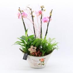 Centro con Orquídeas y...