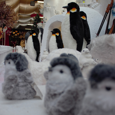 Pingüinos Navidad
